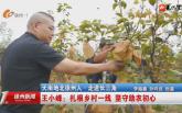 天南地北徐州人·走進長三角 王小峰:扎根鄉村一線 堅守助農初心