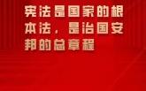 在全社會牢固樹立憲法法律權威 一起來學總書記憲法金句